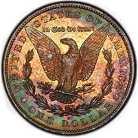 TOP PRICES PAID -- We Need to Buy American Coin Collections
